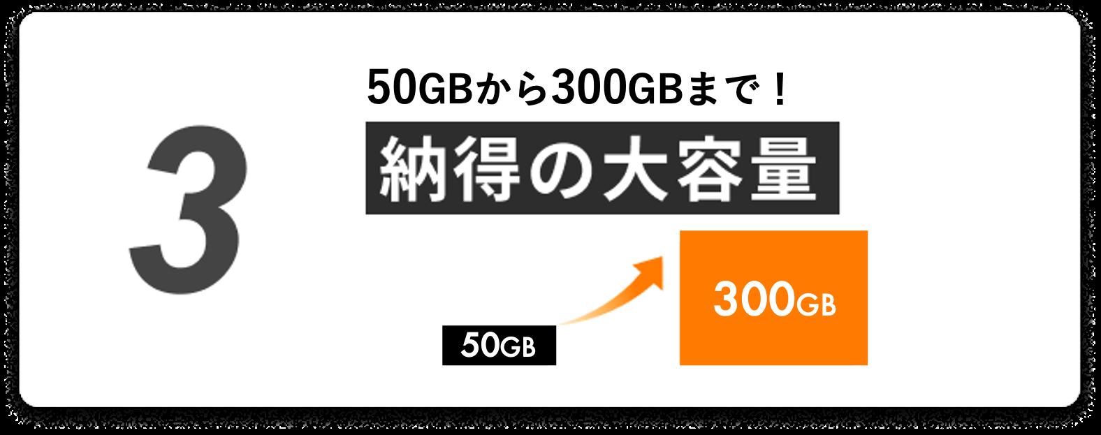 100GBから300GBまで!納得の大容量