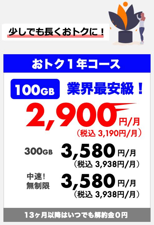 おトク1年コース
